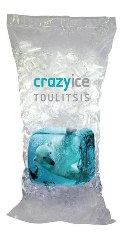 PROFESSIONAL ICE  CUBE PRINTED BAGS